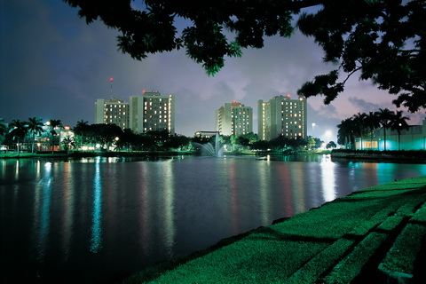 UM Gables night picture 480 x 320